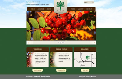 tree-to-tree-website-design-calgary
